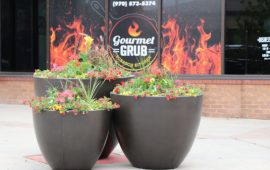 The Hull Review:  Gourmet Grub